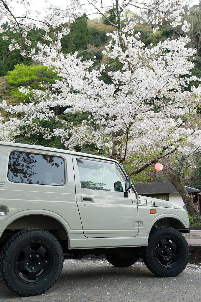 20190406172148_0.jpg 家山桜トンネルとジムニー